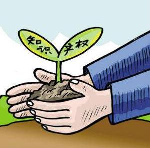 义乌成为浙江首个获评国家知识产权示范城市的县级市