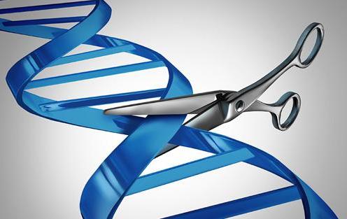 """""""基因魔剪""""CRISPR-Cas9技术的专利之争"""