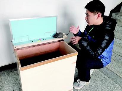 武汉市一高中生发明捕鼠神器登上央视 该装置获世界金奖