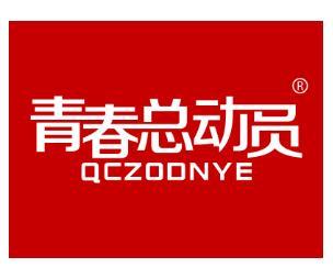 一品标局第25类商标转让推荐:青春总动员QCZODNYE