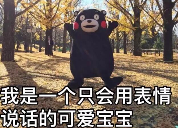 """一只来自日本的熊,在中国""""摔""""了好几次..."""