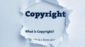 版权治理包括保护,更强调运用