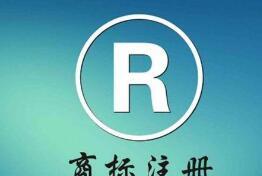 上海虹口:发布知识产权检察白皮书 商标侵权最集中