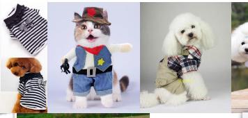 寵物衣服屬于商標哪個類別