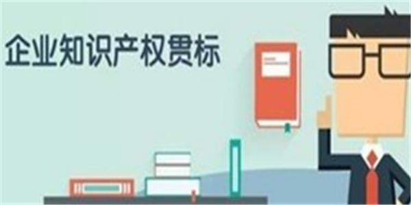广州通过知识产权贯标企业数量居全国城市首位