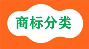 纸板属于国际商标分类的第几类注册商标?