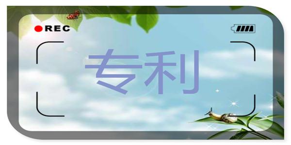 """中国500强企业亮出高""""研值"""" 拥有发明专利48.43万件"""