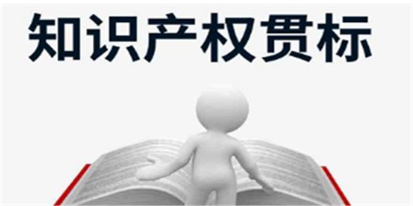福建省泉州市知识产权贯标奖励政策汇总