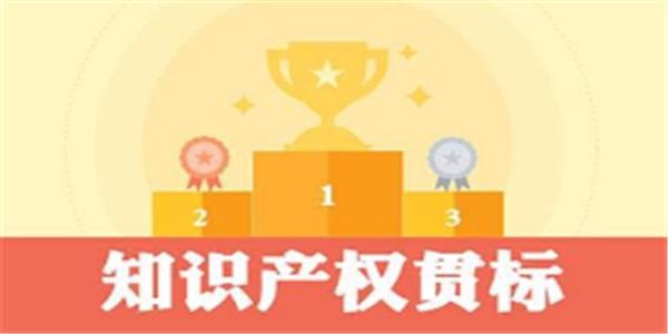 贯标奖励5万元,广东省湛江市知识产权奖励政策