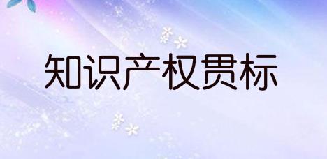 亳州市蒙城县:知识产权优势/示范企业认定奖励及知识产权融资贷款补助政策