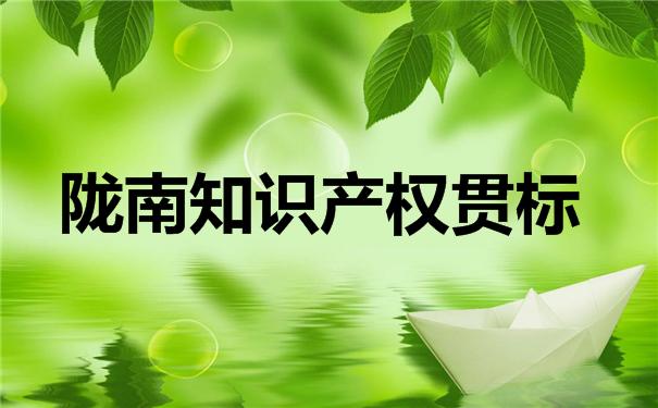 陇南知识产权贯标