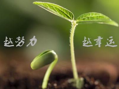 越努力,越幸运,我是连志桥,这是我的故事|一品标局猛虎大将军
